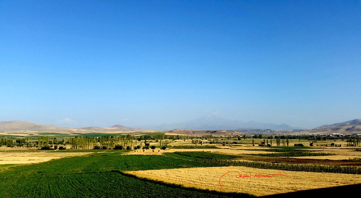 Mount Argaeus (Erciyes in Turkish) and sommer fields near Kayseri. Photo: Orhan Ahıskal